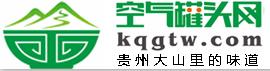 贵州铜仁武陵天下网络科技有限公司:空气罐头网,
